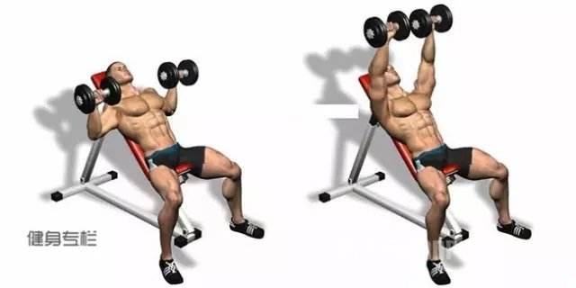 健身房器材-——上斜卧推